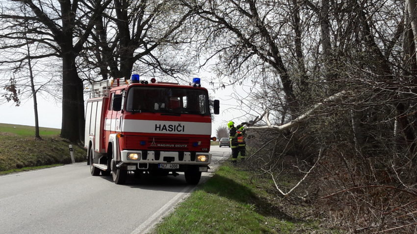 TP Strom Horní vesce (1)